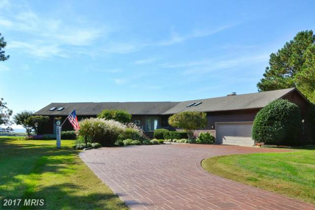 103 Prospect Bay Drive W, Grasonville, MD 21638 (#QA9794334) :: LoCoMusings