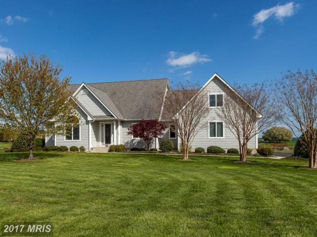 203 Cove Creek Road, Stevensville, MD 21666 (#QA9898281) :: Pearson Smith Realty