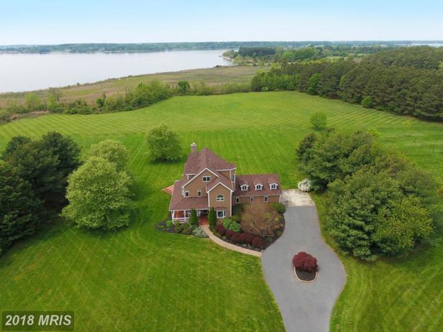 2818 Cox Neck Road, Chester, MD 21619 (#QA9928407) :: Keller Williams Pat Hiban Real Estate Group