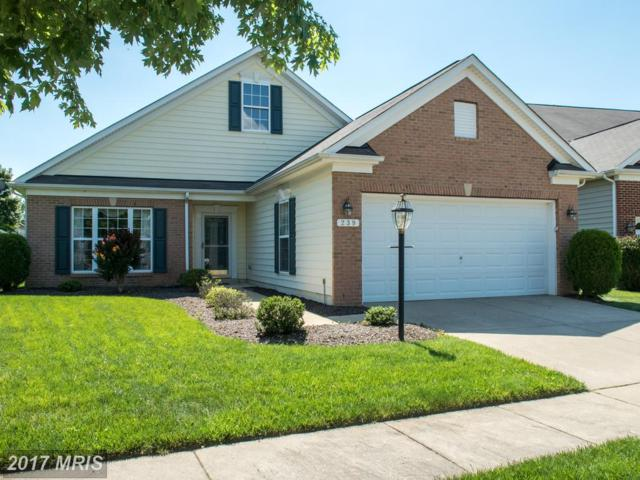 239 Orchestra Place, Centreville, MD 21617 (#QA9974402) :: Pearson Smith Realty