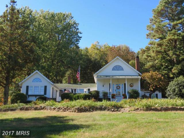 124 Rolling Road, Sperryville, VA 22740 (#RP10078344) :: AJ Team Realty