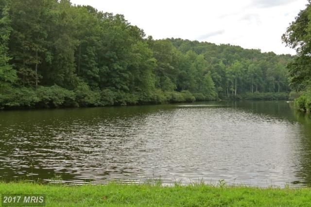 Margies Mountain Lane, Amissville, VA 20106 (#RP9753428) :: LoCoMusings