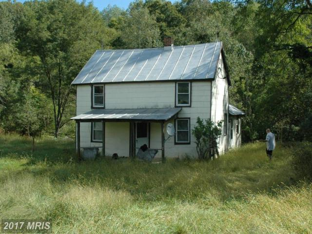 4 Wolf Mountain Lane, Washington, VA 22747 (#RP9784484) :: Pearson Smith Realty