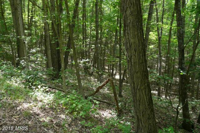 Dale, Basye, VA 22810 (#SH7868872) :: Keller Williams Pat Hiban Real Estate Group