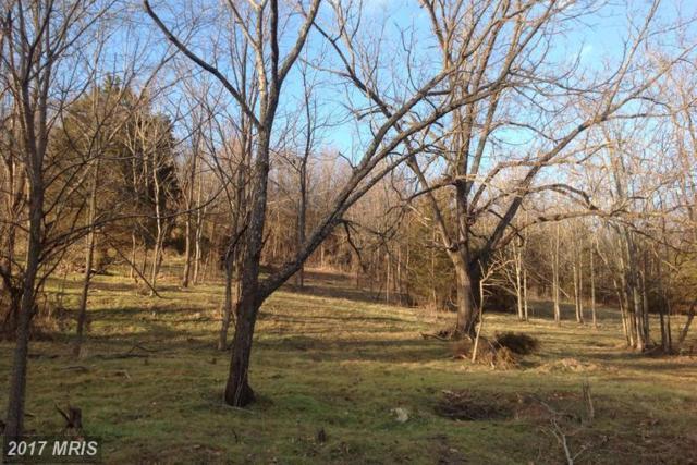 Swover Creek Road, Edinburg, VA 22824 (#SH8535746) :: LoCoMusings