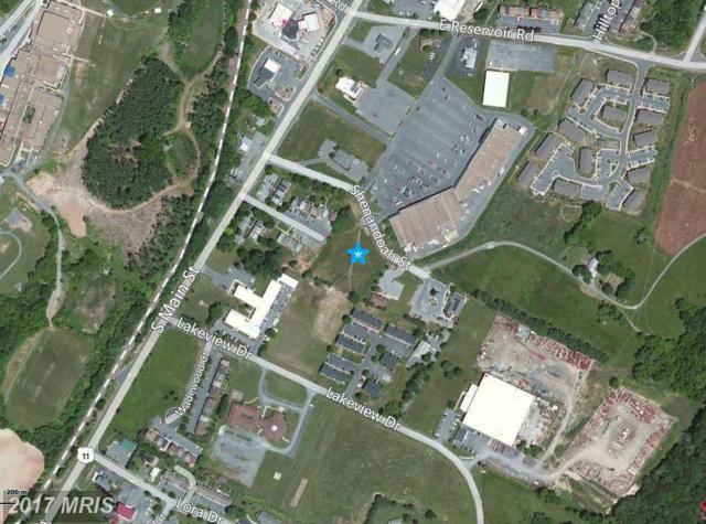 Shenandoah Street, Woodstock, VA 22664 (#SH9546647) :: LoCoMusings