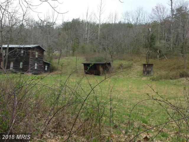 918 Tussing Lane, Mount Jackson, VA 22842 (#SH9676706) :: Pearson Smith Realty