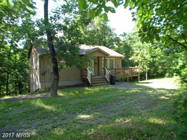 4 Mulberry Lane, Mount Jackson, VA 22842 (#SH9809105) :: Pearson Smith Realty