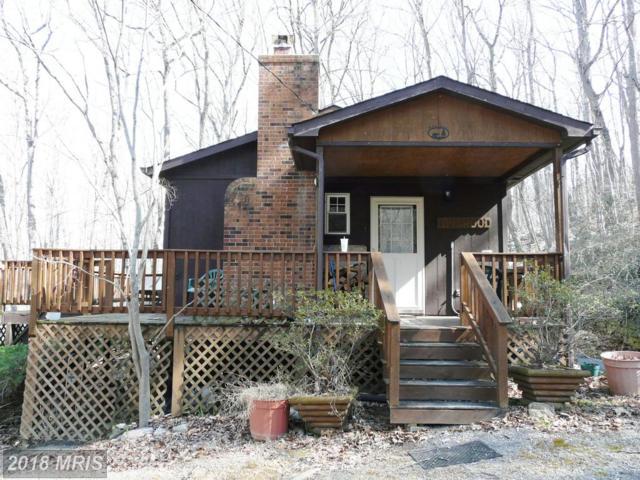 256 Blackberry Lane, New Market, VA 22844 (#SH9896489) :: Browning Homes Group