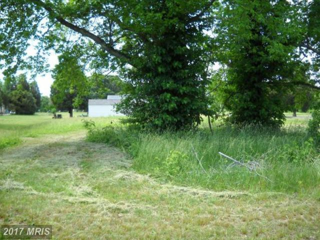 Bushwood Drive, Bushwood, MD 20618 (#SM7340010) :: Pearson Smith Realty