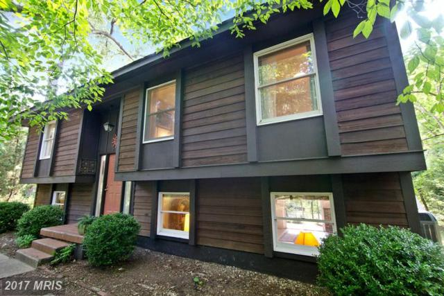 47522 Lucas Cove Lane, Lexington Park, MD 20653 (#SM9702220) :: Pearson Smith Realty