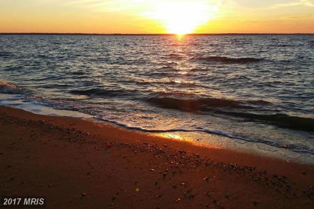 Camp Merryelande Road, Piney Point, MD 20674 (#SM9768756) :: LoCoMusings