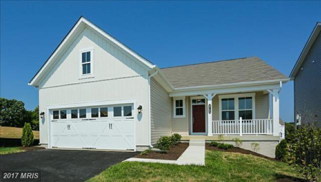 4705 Annie Mae Drive, Fredericksburg, VA 22408 (#SP10016776) :: Pearson Smith Realty