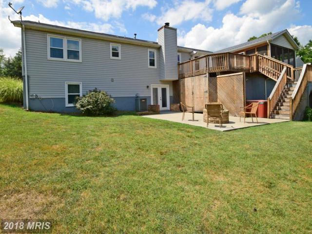 6121 Eds Road, Mineral, VA 23117 (#SP10113279) :: Pearson Smith Realty