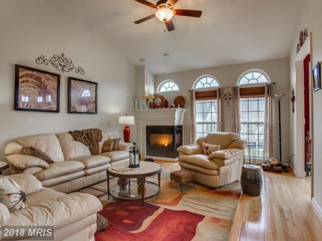 6117 Greenbrier River Road W, Fredericksburg, VA 22407 (#SP10195401) :: Keller Williams Pat Hiban Real Estate Group