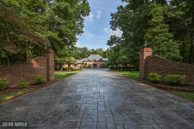 34 Carriage Hill Lane, Fredericksburg, VA 22407 (#SP10201484) :: Browning Homes Group