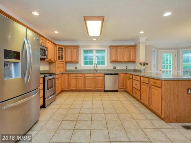5519 Bazzanella Drive, Mineral, VA 23117 (#SP10269364) :: Keller Williams Pat Hiban Real Estate Group