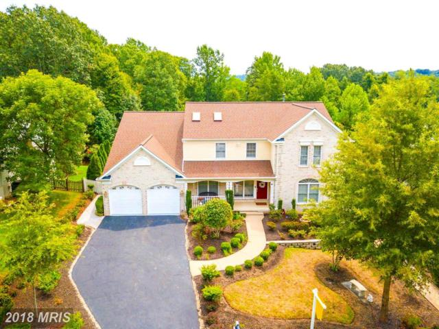 10307 Campbell Drive, Fredericksburg, VA 22408 (#SP10314114) :: RE/MAX Executives