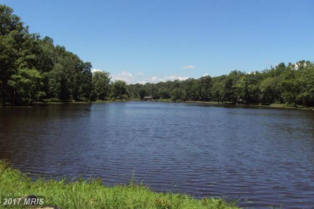 Southlake Drive, Spotsylvania, VA 22551 (#SP8147867) :: LoCoMusings