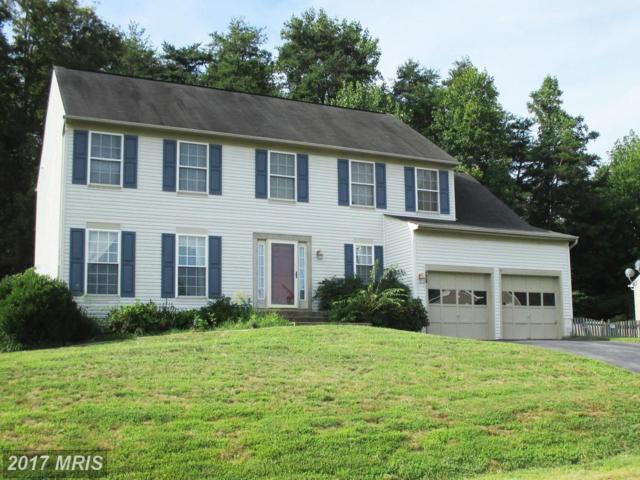 4004 Mossy Bank Lane, Fredericksburg, VA 22408 (#SP9750354) :: Pearson Smith Realty