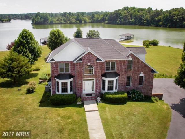 6705 Lake Pointe Drive, Mineral, VA 23117 (#SP9922877) :: Pearson Smith Realty