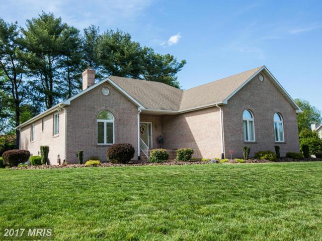 103 Brooke Drive, Fredericksburg, VA 22408 (#SP9924172) :: Pearson Smith Realty