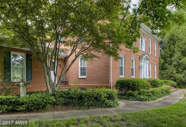 2 Twin Springs Drive, Fredericksburg, VA 22407 (#SP9965478) :: Pearson Smith Realty