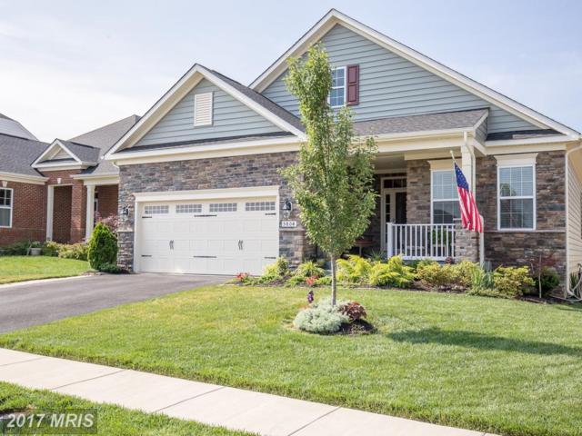 5804 New Berne Road, Fredericksburg, VA 22407 (#SP9978903) :: Pearson Smith Realty