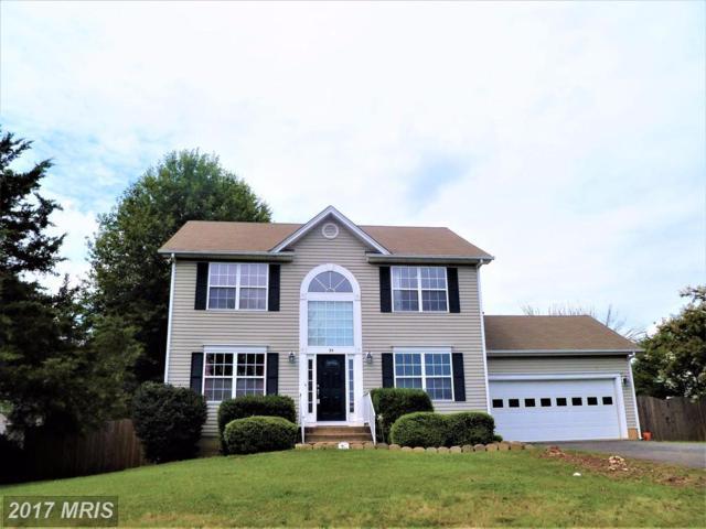 54 Dawson Drive, Fredericksburg, VA 22405 (#ST10016530) :: Pearson Smith Realty