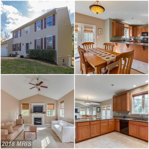 41 Maplewood Drive, Stafford, VA 22554 (#ST10083006) :: The Gus Anthony Team