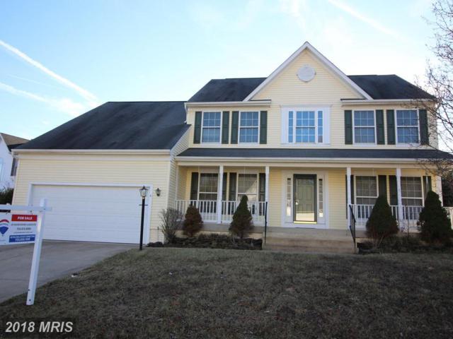 6 Glenhaven Court, Fredericksburg, VA 22406 (#ST10158942) :: Keller Williams Pat Hiban Real Estate Group