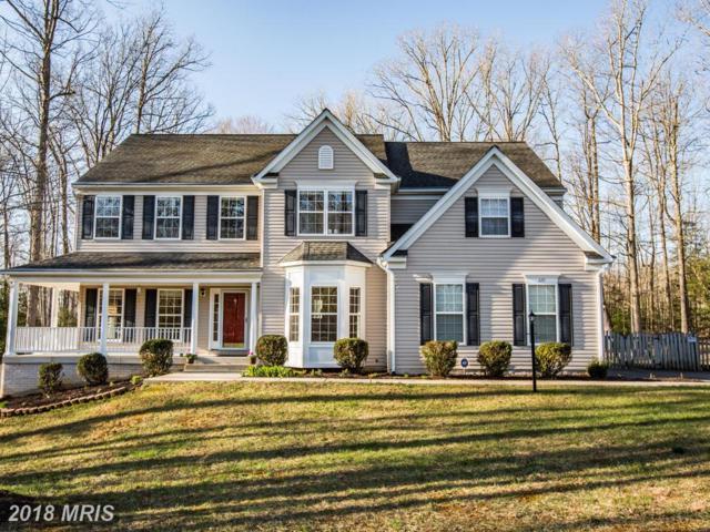 229 Saint Marys Lane, Stafford, VA 22556 (#ST10187094) :: Keller Williams Pat Hiban Real Estate Group