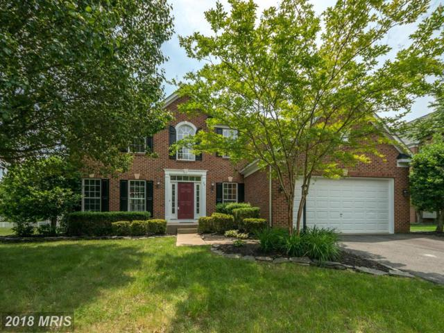 29 Nugent Drive, Stafford, VA 22554 (#ST10252759) :: The Gus Anthony Team