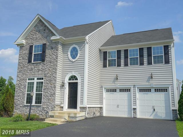 1 Clear Spring Lane, Fredericksburg, VA 22405 (#ST10275345) :: RE/MAX Executives
