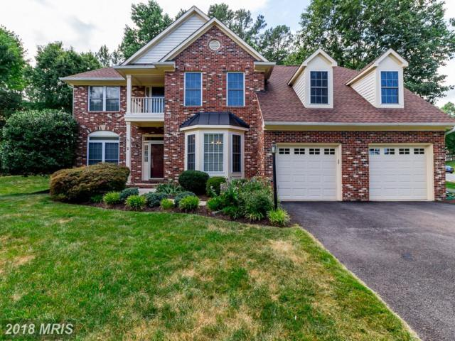 2 Bridgecreek Court, Stafford, VA 22554 (#ST10277598) :: Bob Lucido Team of Keller Williams Integrity