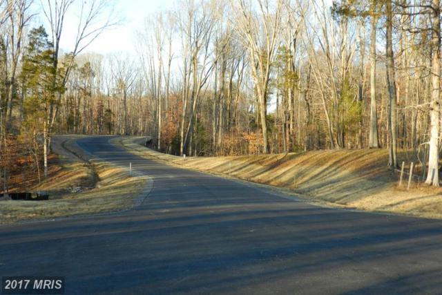 Hopewell Drive, Fredericksburg, VA 22406 (#ST9577267) :: LoCoMusings