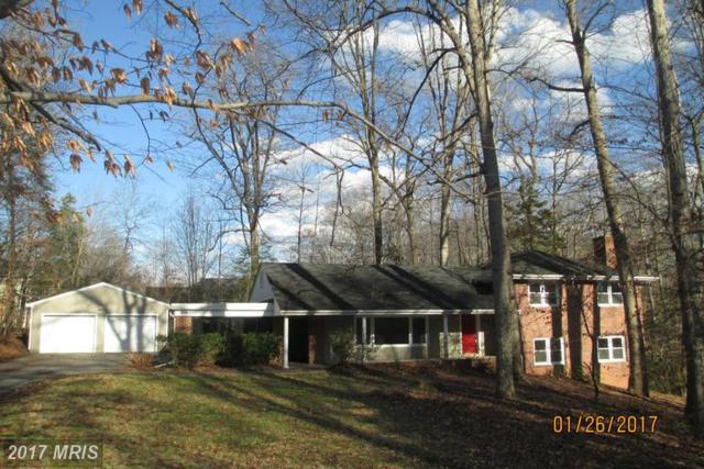 211 Lake Shore Drive, Fredericksburg, VA 22405 (#ST9840500) :: LoCoMusings