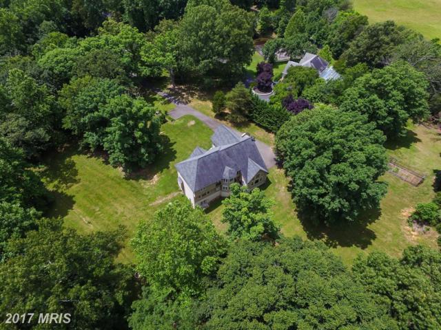 3 English Hills Drive, Fredericksburg, VA 22406 (#ST9951917) :: Pearson Smith Realty