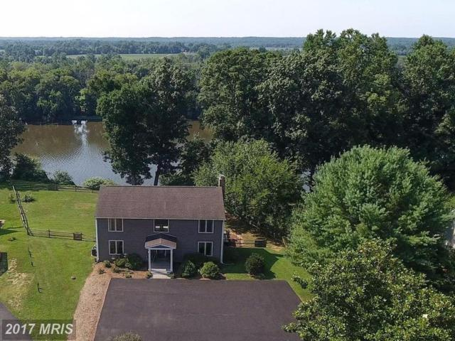 108 Old Landing Court, Fredericksburg, VA 22405 (#ST9997198) :: Pearson Smith Realty