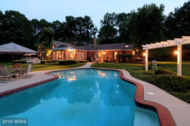 7302 Waverly Island Road, Easton, MD 21601 (#TA10005695) :: Browning Homes Group