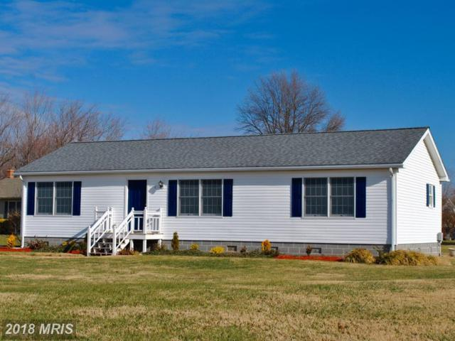 5401 Windward Drive, Tilghman, MD 21671 (#TA10137673) :: The Maryland Group of Long & Foster