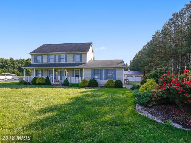 9264 Rockcliff Drive, Easton, MD 21601 (#TA10250410) :: RE/MAX Coast and Country