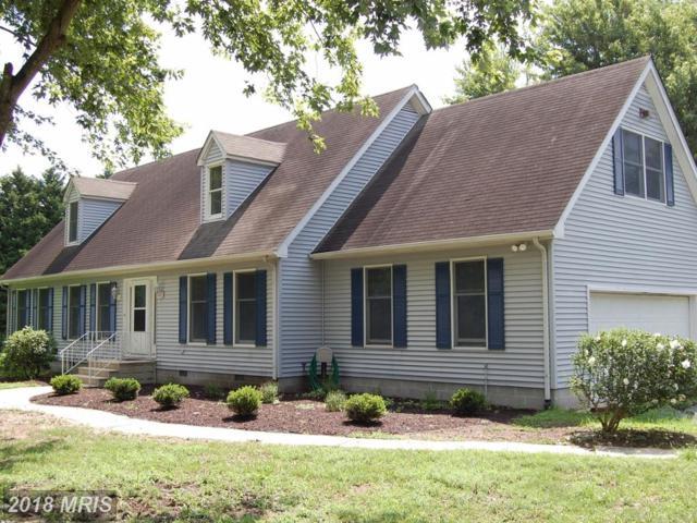 29351 Skipton Cordova Road, Cordova, MD 21625 (#TA10302675) :: Keller Williams Pat Hiban Real Estate Group