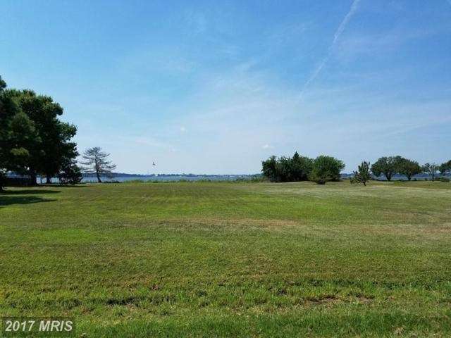 Ferry Point Court, Trappe, MD 21673 (#TA9719761) :: LoCoMusings