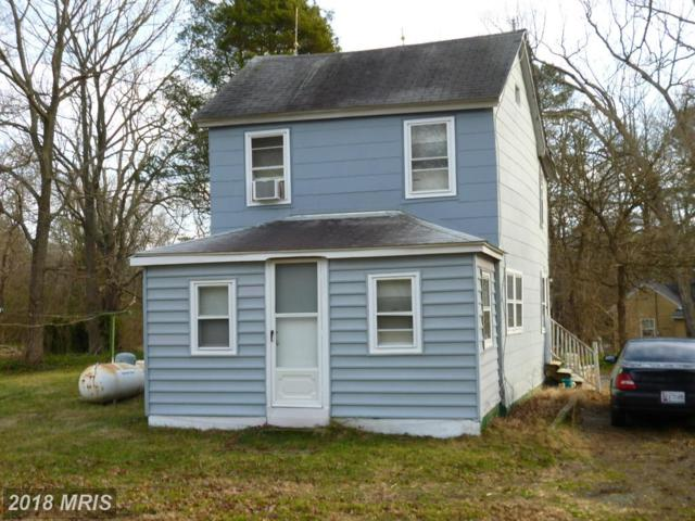 29150 Williamsburg Lane, Trappe, MD 21673 (#TA9855724) :: The Maryland Group of Long & Foster