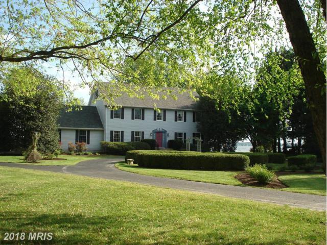 8246 Ingleton Circle, Easton, MD 21601 (MLS #TA9874034) :: RE/MAX Coast and Country