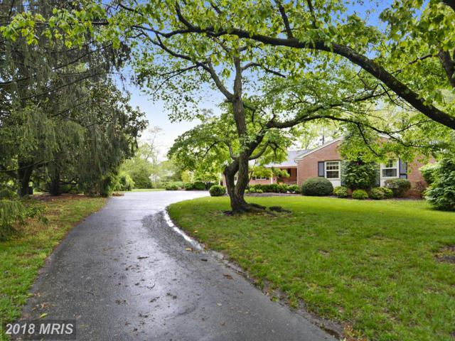 6813 Oxford Road, Easton, MD 21601 (MLS #TA9886727) :: RE/MAX Coast and Country