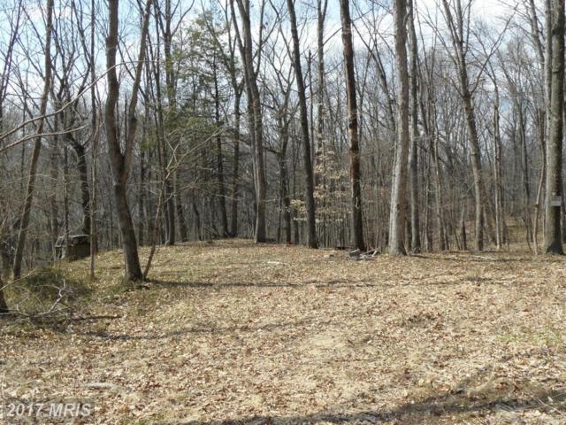 Big Bend Way, Williamsport, MD 21795 (#WA8442633) :: Pearson Smith Realty