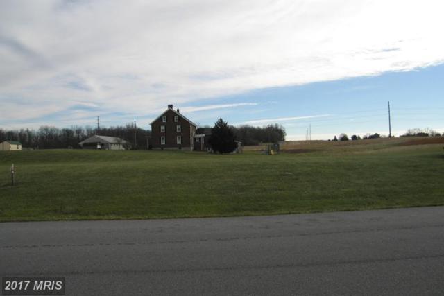 Island Drive, Hagerstown, MD 21740 (#WA8528510) :: LoCoMusings