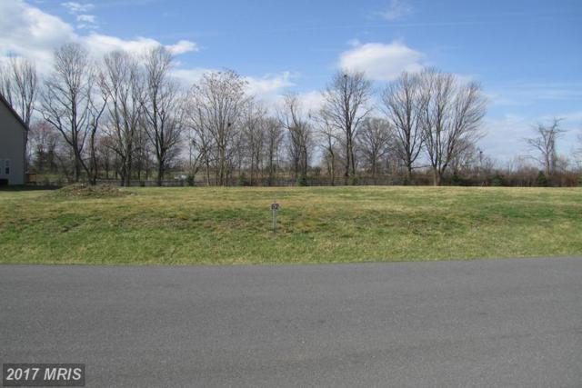 16718 Custer Court, Williamsport, MD 21795 (#WA8595067) :: LoCoMusings